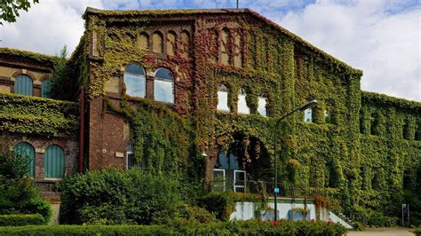 overgrown house-City travel photography wallpaper Preview