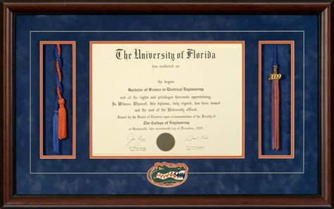 University of florida diploma frame with honor cords